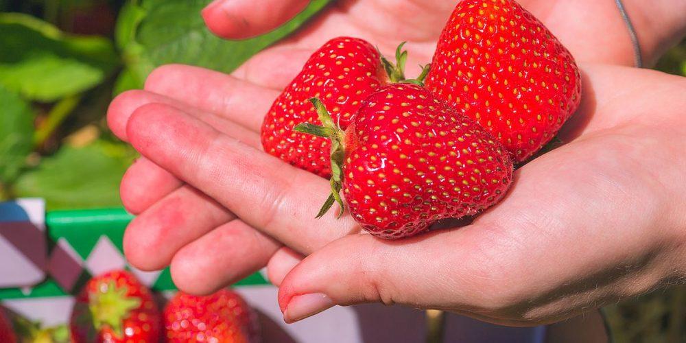Φράουλες: για την καρδούλα κι όχι μόνο…