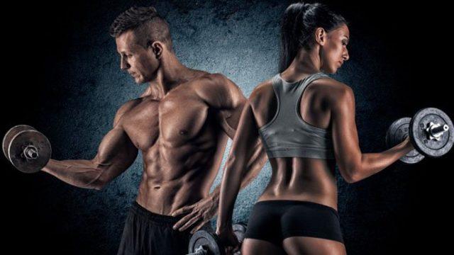 Γυμναστήριο, αθλητική διατροφή και πρωταθλητισμός